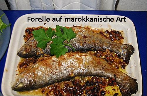 Forelle marokkanische Art